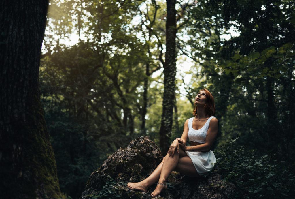 Meeko reine de la forêt